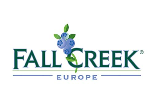 Fall Creek Europe Master Negocios Internacionales Sevilla Cajasol