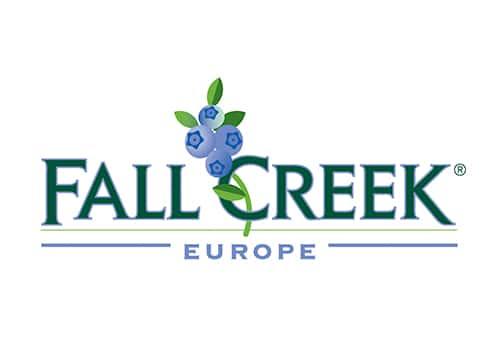 Fall Creek Europe Master Negocios Internacionales Sevilla Cajasol